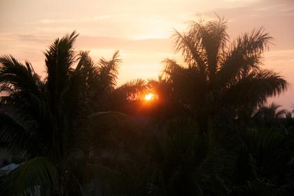 sunrise in paradise