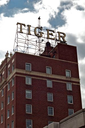 Tiger sign bldg